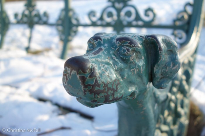 dog head on wrought iron bench at Charlottenburg Schloss Park, Berlin